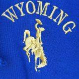 Wyoming bucking horse